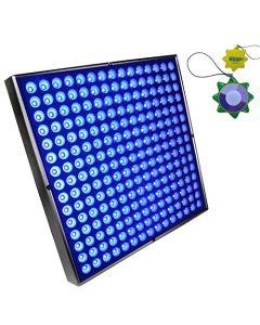 HQRP Powerful 45 Watt 225 LED Blue Indoor Garden Hydroponic Plant Grow Light Panel with Hanging Kit + HQRP UV Meter