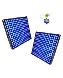 HQRP 450 Blue LED Grow Light Panel 2x Square Lamps 90W for Growing Indoor Flowers, Plants, Fruits, Vegetables plus Hanging Kit + HQRP UV Meter