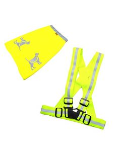 HQRP Safety Reflective KIT - Fluorescent Vest & Dog Vest for Safe Nigth Dog Walking, Jogging, Running, Cycling - High Visibility Neon Yellow