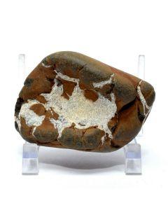 Reserved for MEREDITH - 69mm Septarian Dragon Geode Natural Crystal Cluster Fossil Mineral Specimen Utah